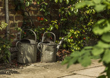 Two metal watering cans in a sunny green garden bush Royalty Free Stock Images