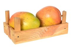 Two Mexican mango Royalty Free Stock Photography