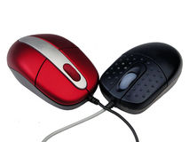 Two mice. A pair of mice Royalty Free Stock Images