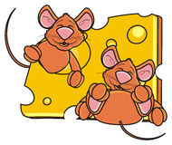 Two mice snout peeking out of a piece of cheese Royalty Free Stock Image