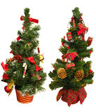 Two mini Christmas trees Stock Photos