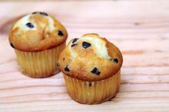 Two mini muffins Stock Photos