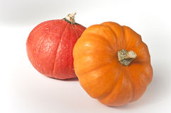Two mini pumpkins. A red and an orange mini pumpkin Royalty Free Stock Photography