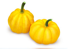 Two mini pumpkins Royalty Free Stock Photos