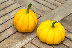 Two mini pumpkins Royalty Free Stock Image