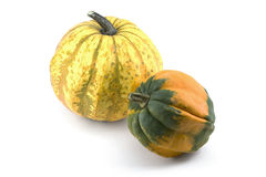 Two Miniature Ornamental Pumpkins Royalty Free Stock Photos