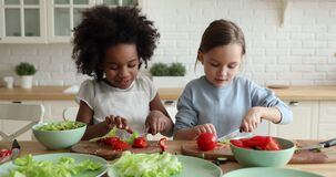 Two mixed race children stepsisters cutting fresh vegetable salad together