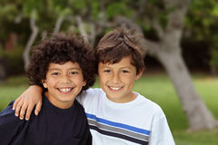 Two mixed race friends Stock Photography