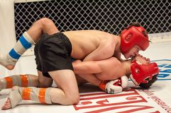 Two MMA fighter Stock Photos