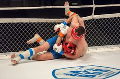 Two MMA fighter Stock Photography