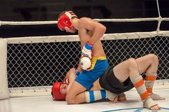 Two MMA fighter Stock Photo