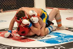 Two MMA fighter Royalty Free Stock Photography
