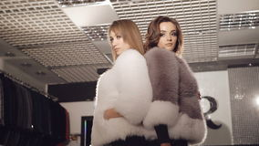 Two models posing in fur coats in fashionable rich boutique stock video footage