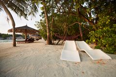 Two modern beach chairs under tropical palm trees on the beach. Indian ocean coastline on Maldives island. White sandy. Beach chairs under umbrellas. Indian royalty free stock image