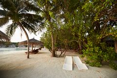 Two modern beach chairs under tropical palm trees on the beach. Indian ocean coastline on Maldives island. White sandy Royalty Free Stock Image