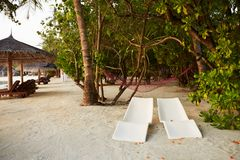 Two modern beach chairs under tropical palm trees on the beach. Indian ocean coastline on Maldives island. White sandy royalty free stock photography