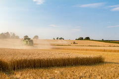 Two modern combine harvester cutting crops corn wheat barley working golden field Royalty Free Stock Images