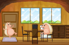 Two molehogs inside the house Royalty Free Stock Photography
