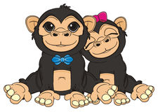 Two monekys sits Royalty Free Stock Images
