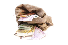 Two Money bags with euro. Isolated on white background Stock Image