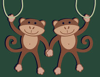 Two Monkeys. Handing on a vine with green background Royalty Free Stock Photos