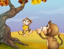 Two monkeys beside the big tree. Illustration of the two monkeys beside the big tree Royalty Free Stock Photography