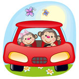 Two Monkeys in a car vector illustration