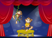 Two monkeys performing on the stage Royalty Free Stock Images
