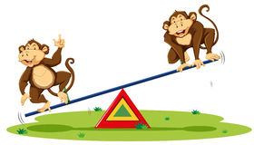 Two monkeys playing on seesaw Stock Image