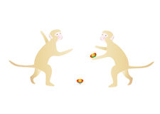 Two monkeys playing with tops Royalty Free Stock Photo