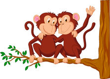 Two monkeys sitting on a tree Royalty Free Stock Images