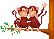 Two monkeys sitting on a tree Royalty Free Stock Photo