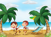 Two monkeys wearing a hawaiian attire Stock Photo