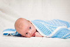 Two-month baby Stock Photography