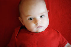 Two month baby laying on a red blanket Royalty Free Stock Photo