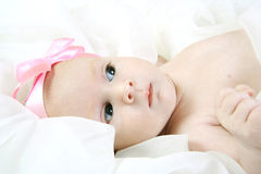 Two month old baby Royalty Free Stock Images