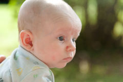 Two Month Old Baby Outside Royalty Free Stock Image
