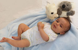 Two months baby boy with koala toy Royalty Free Stock Photos