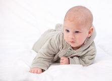 Two months old baby boy Royalty Free Stock Image