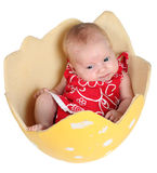 Two months old baby girl Royalty Free Stock Photo