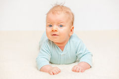 Two months old baby Stock Photography