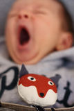 Two months old little baby, yawning in front of his stuffed red fox Royalty Free Stock Images