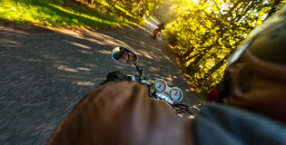 Two motorbikers riding on empty road. In forest with sunrise light, concept of speed and travel in nature Royalty Free Stock Image
