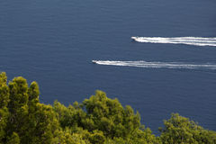 Two motorboats against a blue sea and trees Royalty Free Stock Image