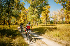 Two mountain bike cyclists riding track at sunny day, healthy l Stock Photography