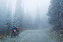 Two Mountain bikers in fog on mountain Stock Photo