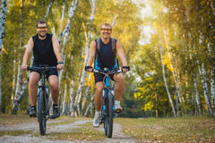 Two mountain bikers riding bike in the forest Royalty Free Stock Images