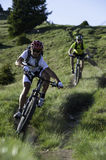 Two mountainbikers by downhill. Mountainbike downhill in the mountains - two bikers Stock Photography