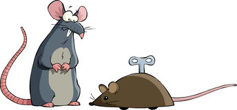 Two mouse Stock Photos