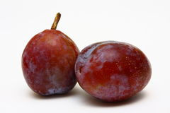 Two Moyer Prunes Stock Images